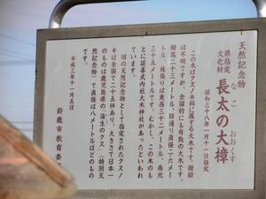 長太の大楠 銘板.JPG